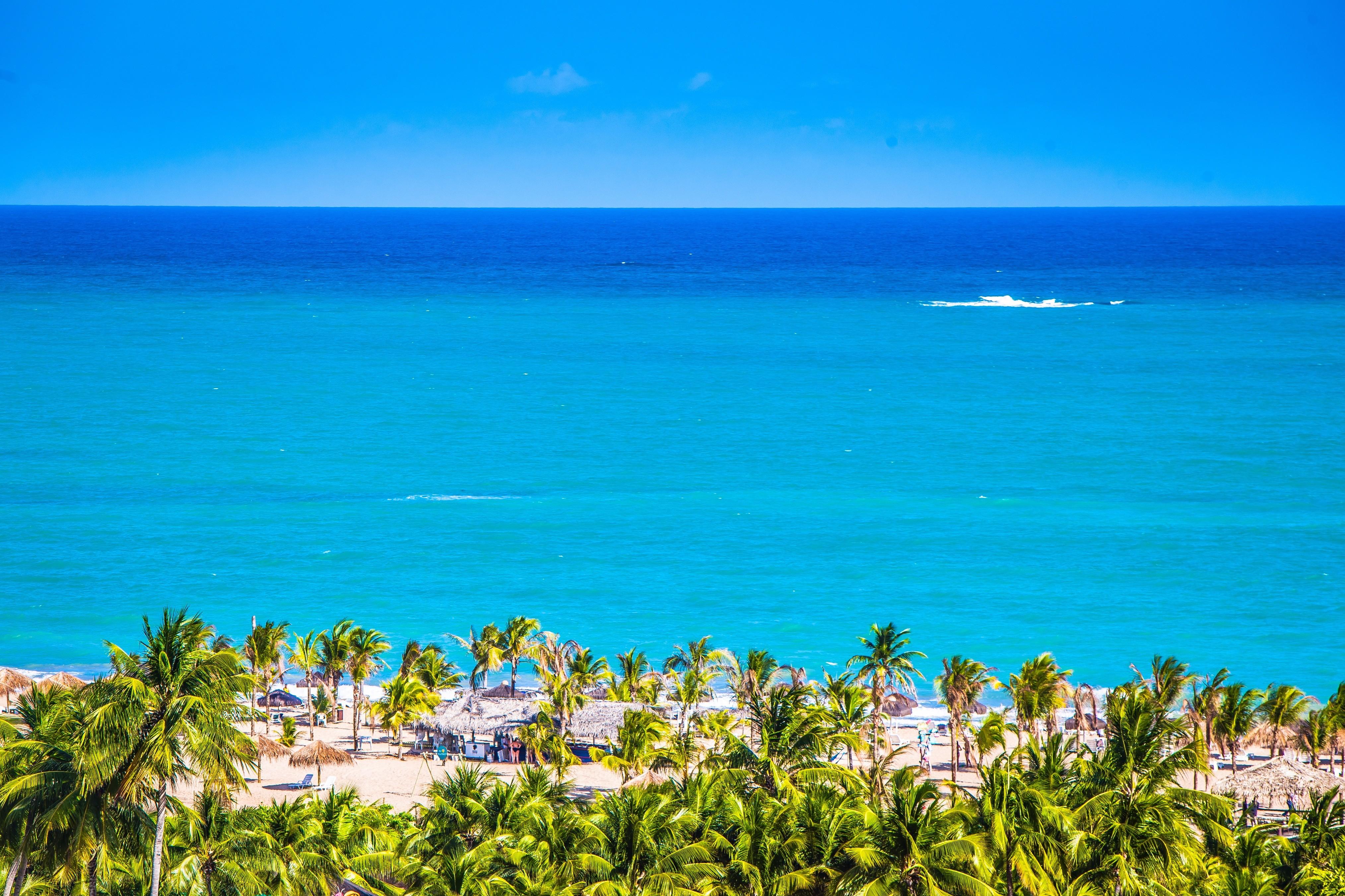 Praia de Pratagy, Maceió, Alagoas  (Foto: divulgação)