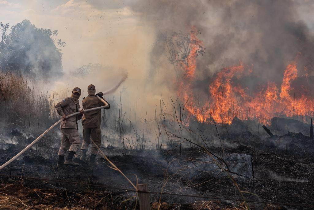 Período proibitivo de queimadas em MT é adiantado para o dia 1º de julho