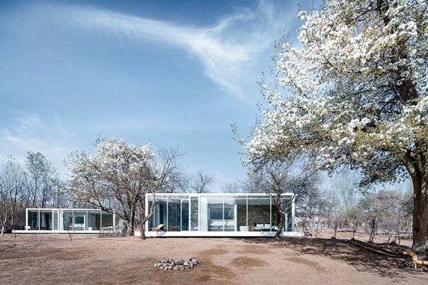 Hotel de vidro à beira de rio promete relaxamento e contato com natureza (Foto: Divulgação)