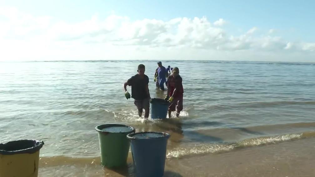 Limpeza do óleo na Praia da Barra de Jangada, em Jaboatão dos Guararapes — Foto: Reprodução/TV Globo