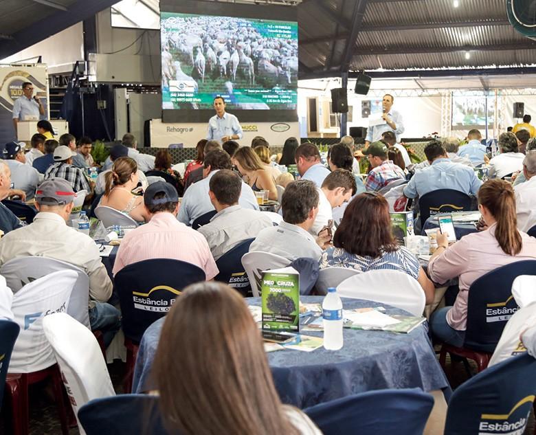 Pregão realizado pela Estância Bahia (Foto: divulgação)