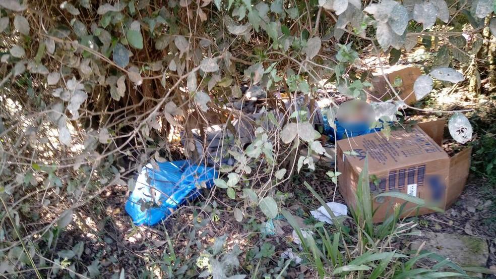 Corpos de duas crianças foram encontrados em caixa de papelão e sacos plásticos em matagal em Novo Hamburgo, no dia 4 de setembro (Foto: Polícia Civil/Divulgação)