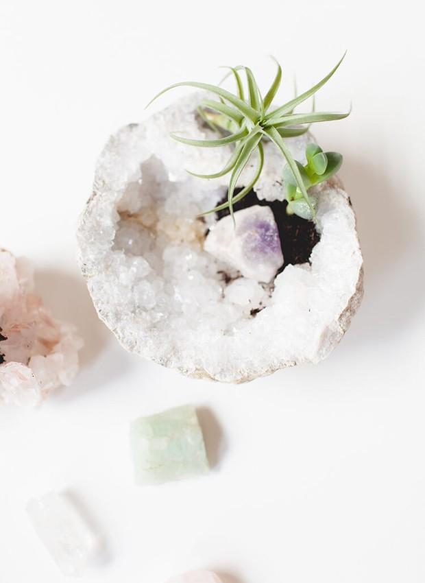O cristal pode ser um suporte para suculentas  (Foto: Jojotastic/ Reprodução )
