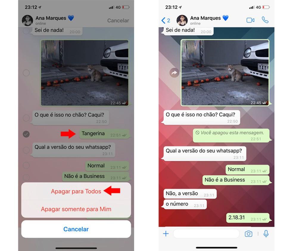 Como apagar uma mensagem para todos no iPhone (Foto: Reprodução/Thássius Veloso)