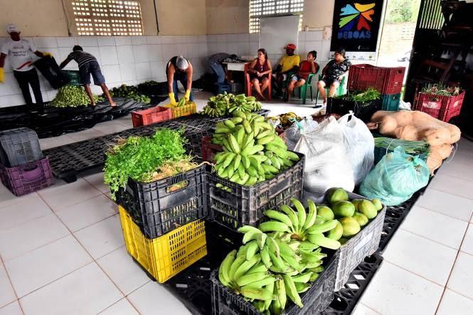Pequenos produtores de São Luís têm até 13 de novembro para se inscreverem no PAA
