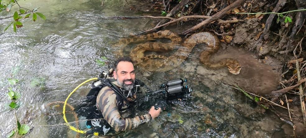Cristian Dimitrius com sucuri gigante durante sessão de fotos em Bonito (MS)  Foto: Cristian Dimitrius/Arquivo Pessoal