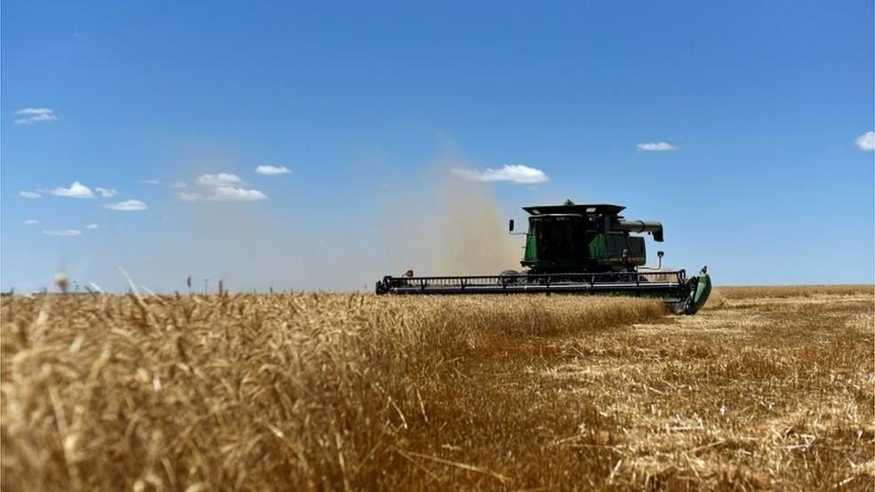 Nos Estados Unidos, apenas 10% do setor automotivo consome etanol; já no Brasil, esse número chega a 46% da frota — Foto: Reuters