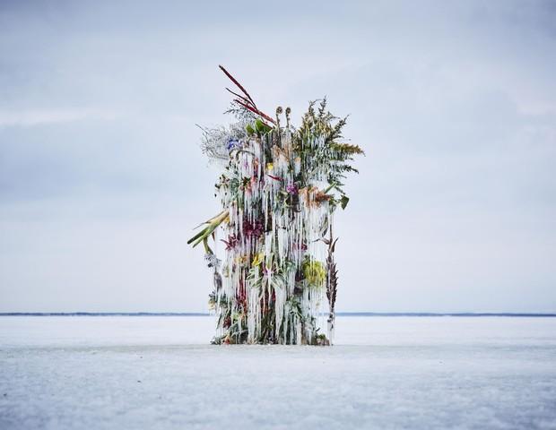 Artista leva flores para campo congelado no Japão em projeto artístico