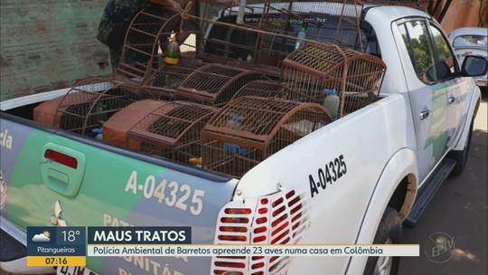 Homem é multado em R$ 80 mil por maus-tratos contra aves em cativeiro em Colômbia, SP