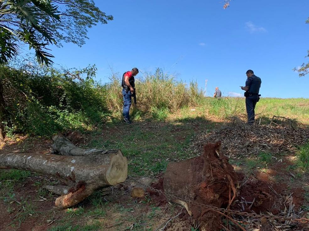 A moto foi localizada nas proximidades da Rodovia João Hipólito Martins, a Castelinho — Foto: Polícia Civil/Divulgação