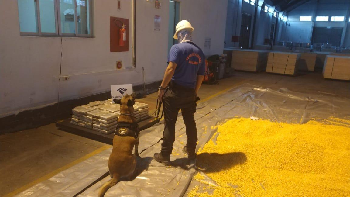 Receita Federal apreende 128 kg de cocaína em carga de milho no Porto de Itajaí