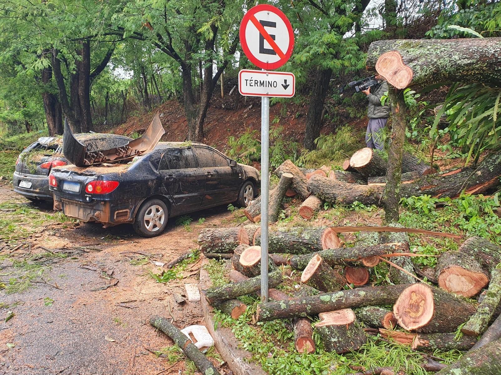 Chuvas derrubam árvores e destroem telhado de universidade em Foz do Iguaçu; VEJA FOTOS