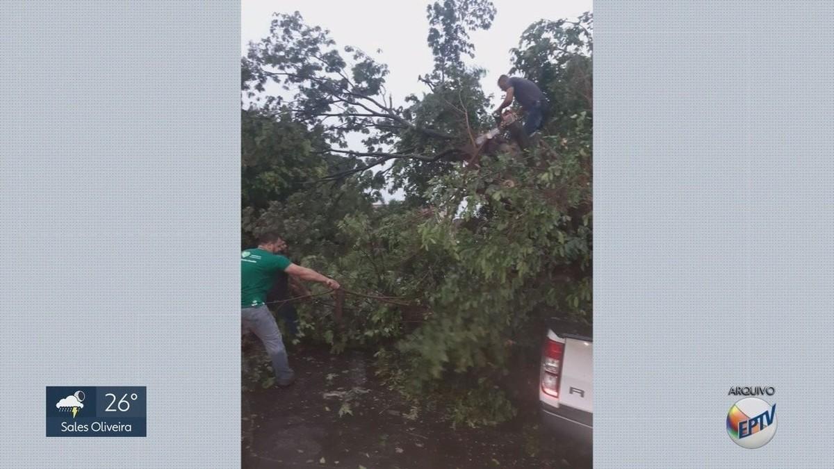 Moradores calculam prejuízos um dia após temporal danificar imóveis em Igarapava, SP - G1