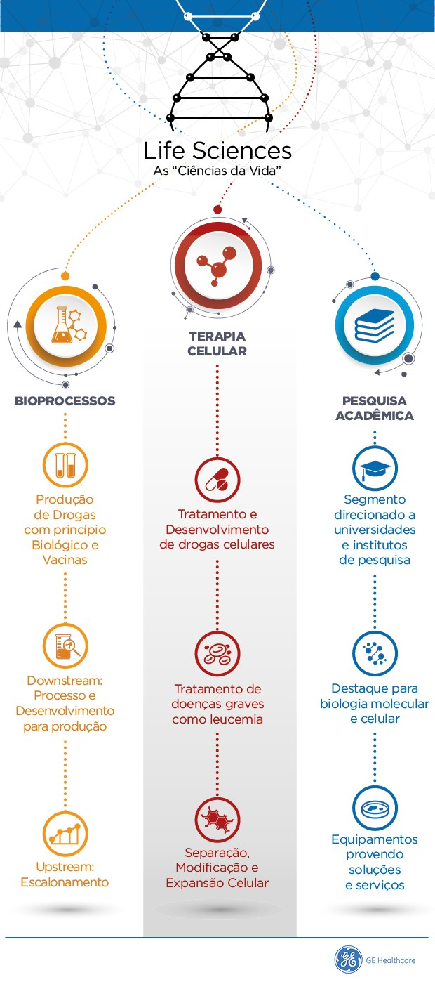 As áreas de atuação da GE Healthcare Life Sciences no Brasil (Foto: G.Lab)