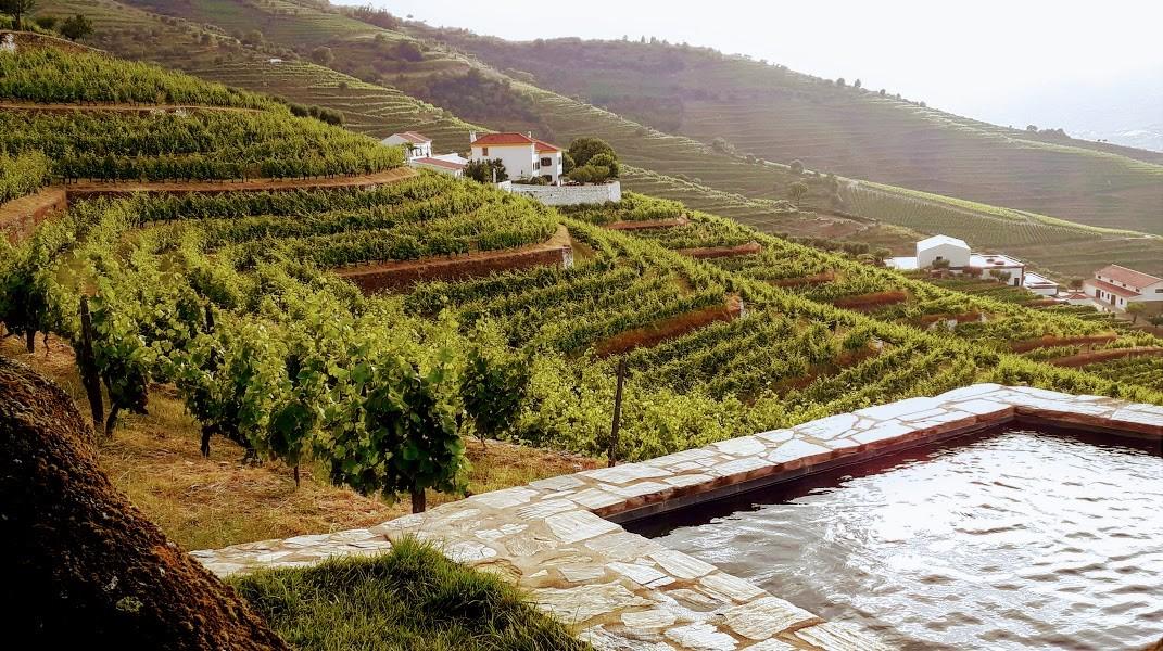 Quinta da Côrte, no Vale do Douro: simplicidade e segurança para novos tempos de turismo em Portugal