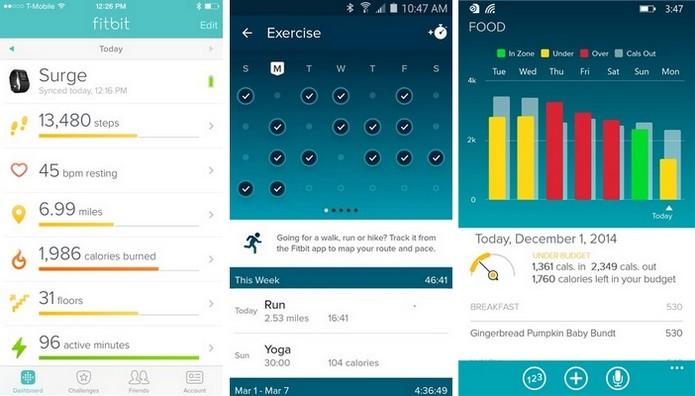Fitbit está disponível para Windows Phone, Android e iOS (Foto: Divulgação)