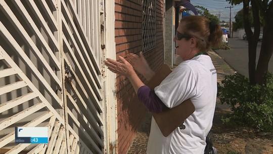Com 245 casos de dengue, Prefeitura de Araras decreta situação de emergência