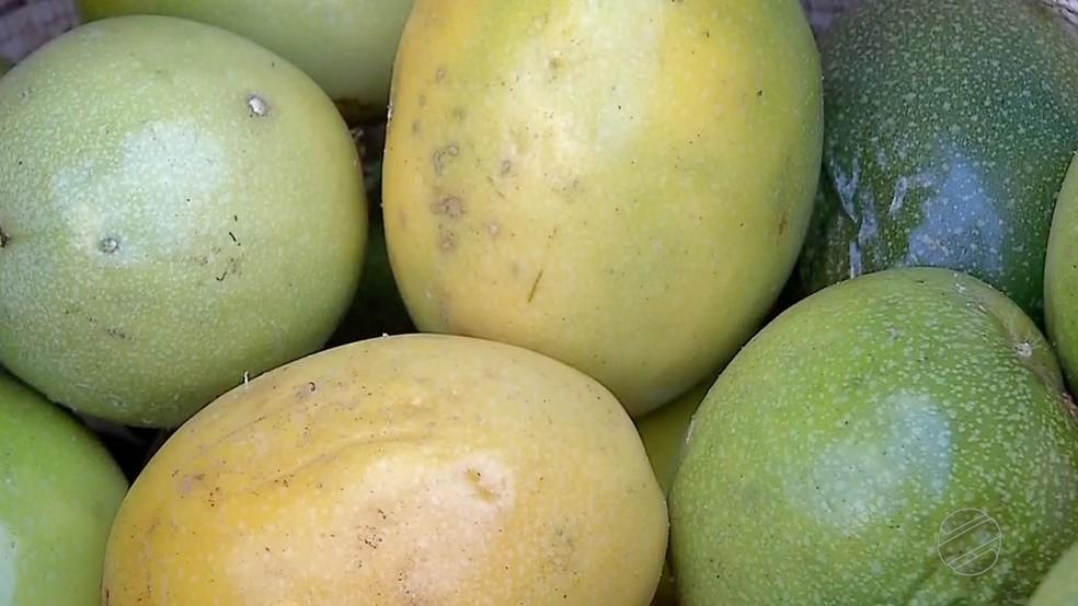 Quilo do maracujá é vendido a R$ 5  — Foto: TVCA/Reprodução