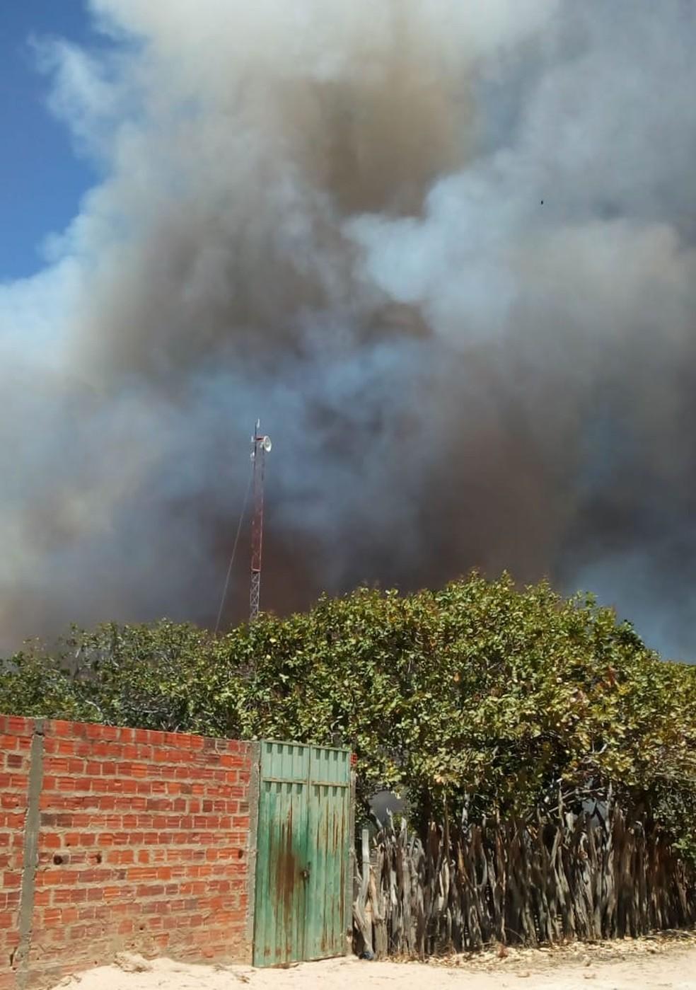 Incêndio atinge produção de biodiesel no Sul do Piauí — Foto: Arquivo Pessoal/Ricardo Pereira