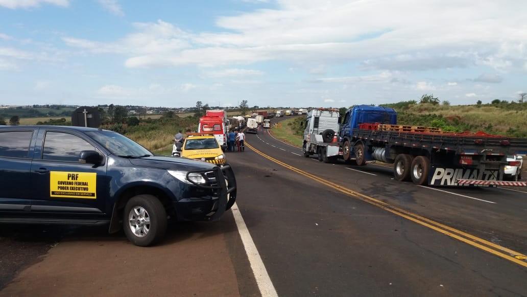 Paraná lidera em número de mortes por atropelamento em rodovias federais, diz pesquisa - Notícias - Plantão Diário