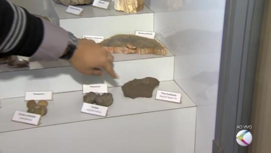 Museu de Ciências da Terra possui peças do acervo do Museu Nacional do Rio de Janeiro