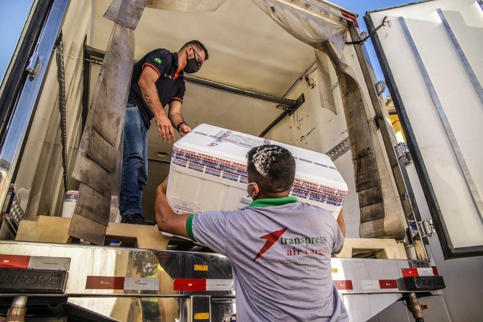 Piauí recebe doses da vacina Pfizer — Foto: Divulgação/Sesapi