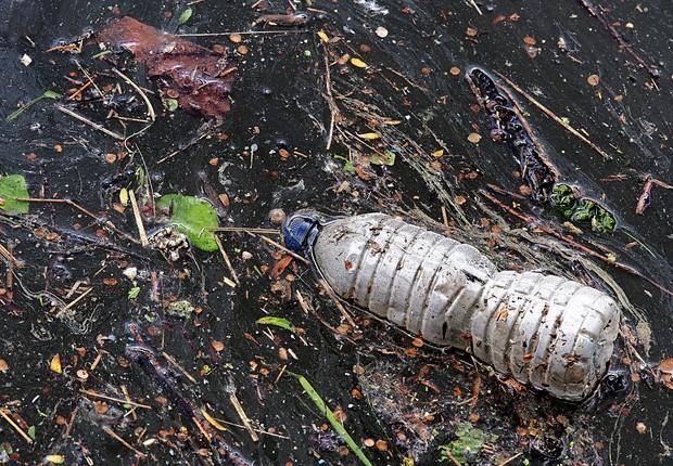 Uma das muitas garrafas plásticas que poluem o mar (Foto: Pixabay)