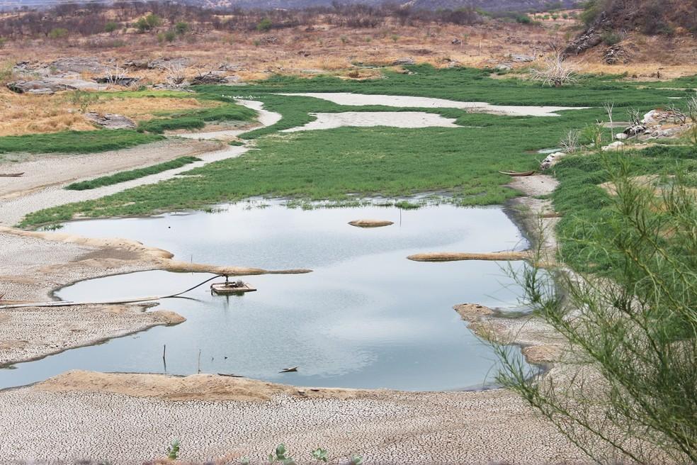 Açudes do RN acumulam cerca de um quarto da capacidade de armazenamento de água, mesmo após quadra chuvosa (Arquivo/Dezembro de 2017) — Foto: Anderson Barbosa/G1