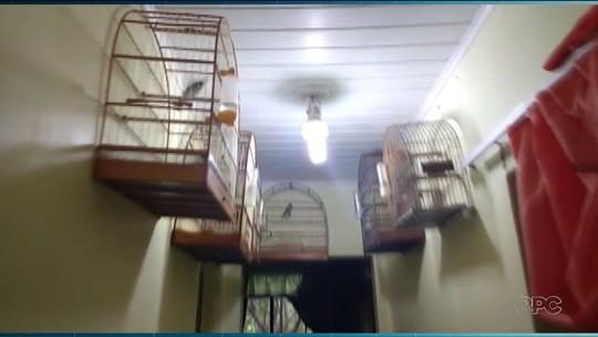 Campus da UFPR em Palotina recebe aves apreendidas em Marechal Cândido Rondon