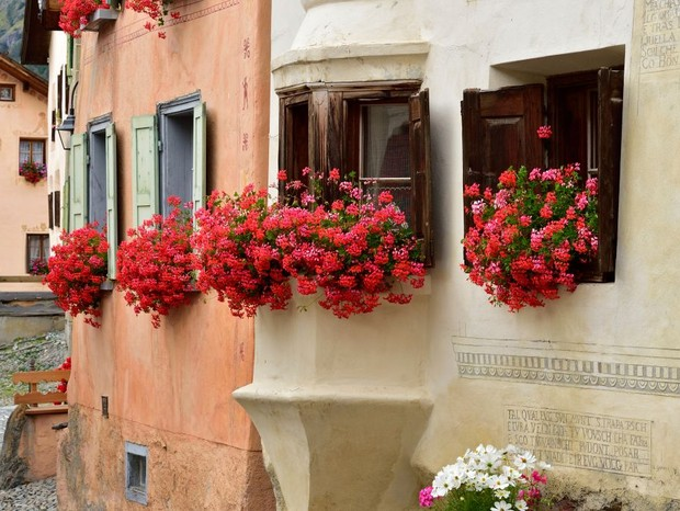 Flowering geraniums on the windows of a house, Guarda, Scuol, Engadin, Canton of Graubunden, Switzerland. (Photo by Albert Ceolan / De Agostini Picture Library via Getty Images) (Foto: De Agostini via Getty Images)