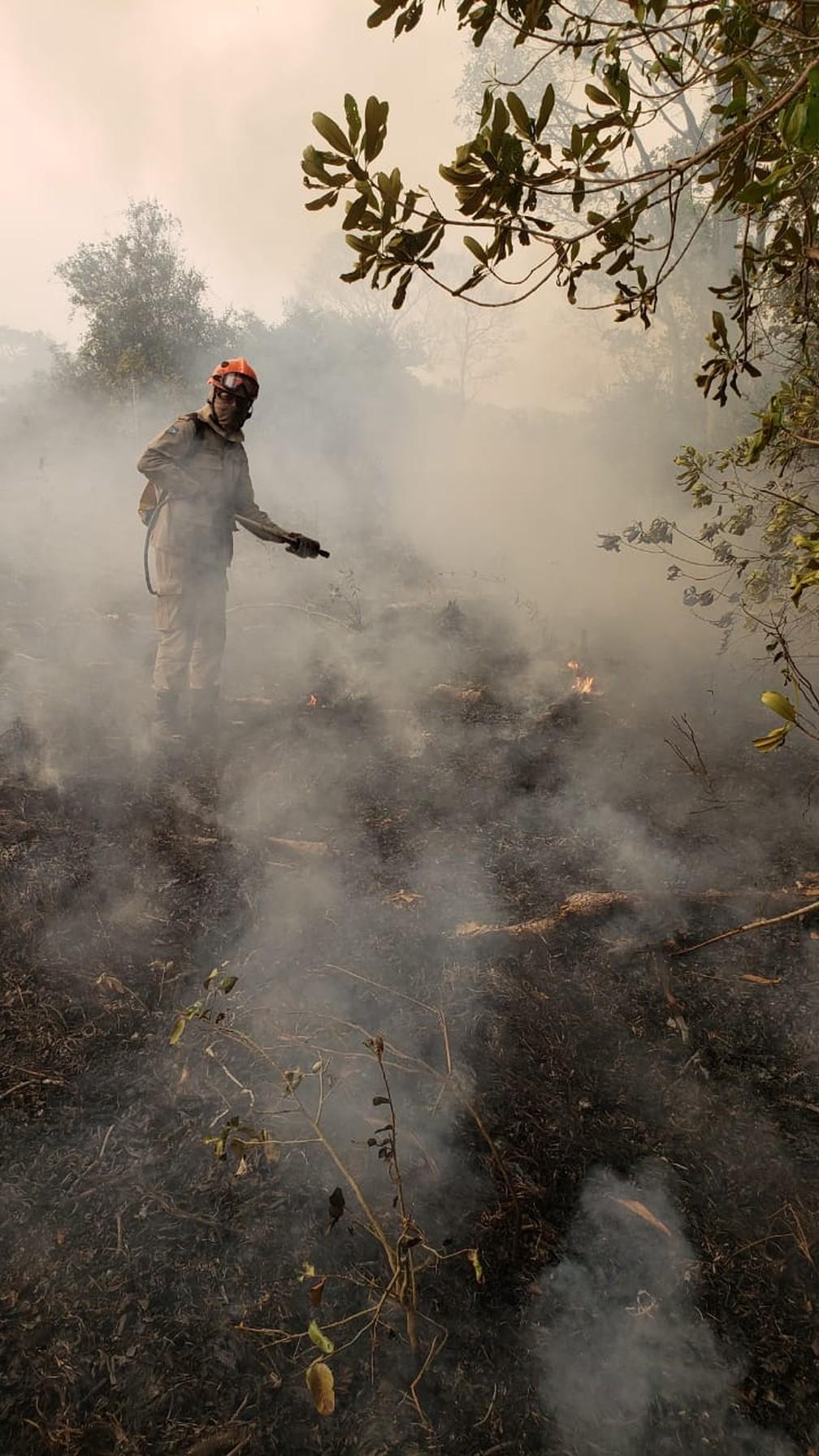 Bombeiros tentam combater as chamas há quase um mês — Foto: João Paulo Gonçalves/Corpo de Bombeiros-MT