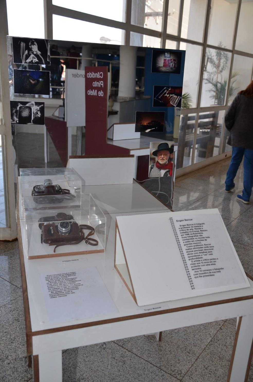 Exposição ocorre até 29 de setembro (Foto: Divulgação/Assessoria de Imprensa da Prefeitura de São Carlos )