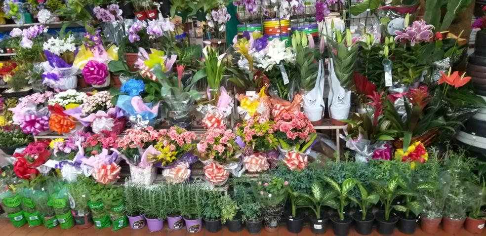 Flores à venda colorem e enfeitam os corredores do Mercado Central — Foto: Alex Araújo/G1