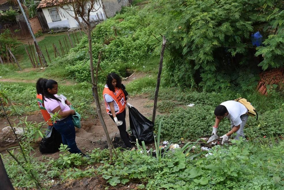 Mutirão de limpeza foi realizado no município — Foto: Prefeitura/ Divulgação