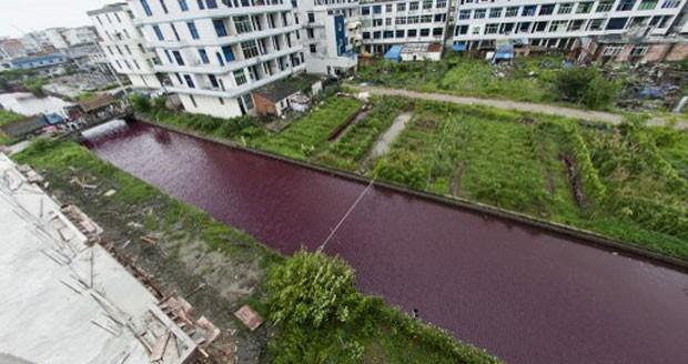Imagem do alto mostra o verde da margem do rio destoando da cor vermelha de sua água (Foto: STR/AFP)
