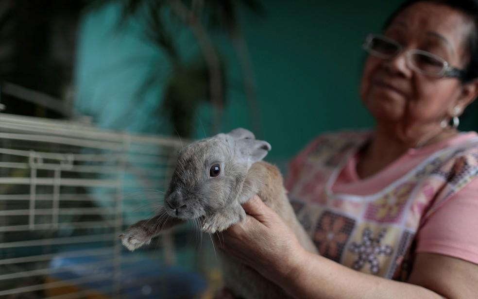 -  Maria Galindo exibe a coelha de estimação Lola em sua casa em Caracas, na Venezuela, na quinta-feira  14   Foto: Reuters/Marco Bello