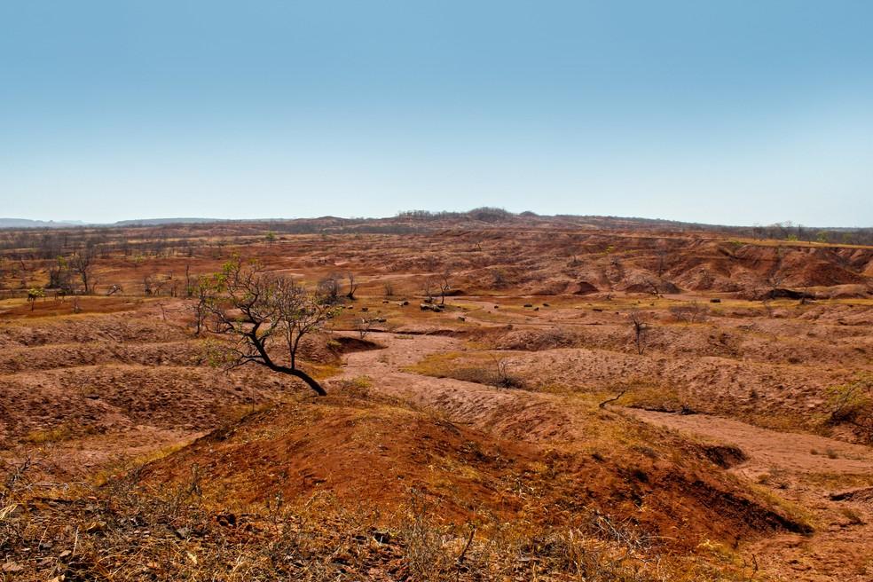 Fundo do Clima é usado para combater consequências da mudança climática, como falta de água no semiárido — Foto: Pedro Santiago/G1