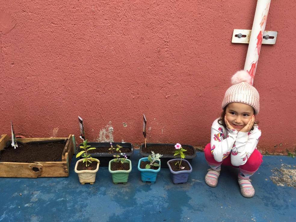 No isolamento social, professora Mariana César aproveita para criar uma horta com a filha em casa — Foto: Arquivo Pessoal