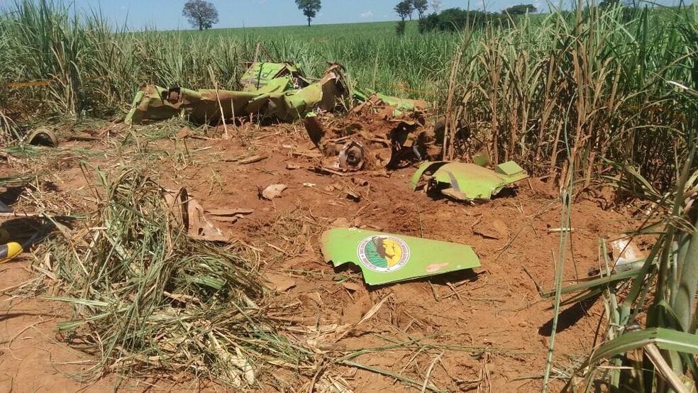 Avião agrícola caiu em uma área de canavial em Promissão  (Foto: J. Serafim / Divulgação )