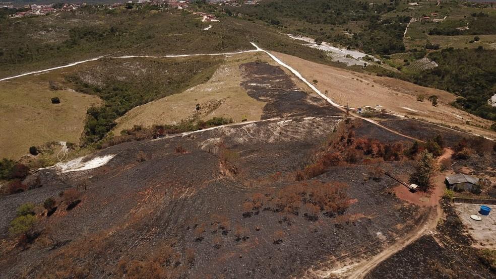 Focos de incêndio são registrados em área de vegetação na Chapada Diamantina — Foto: Divulgação / IPAH