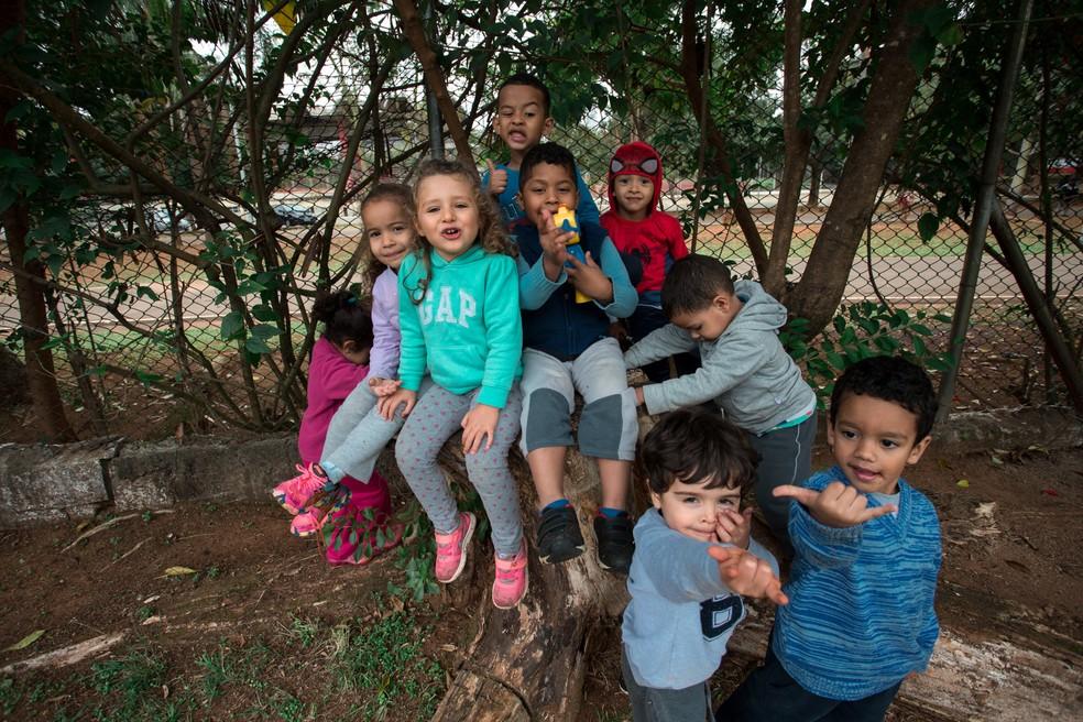 Crianças sobem em árvores e brincam em tanques de areia durante o dia nas creches. — Foto: Marcelo Brandt/G1