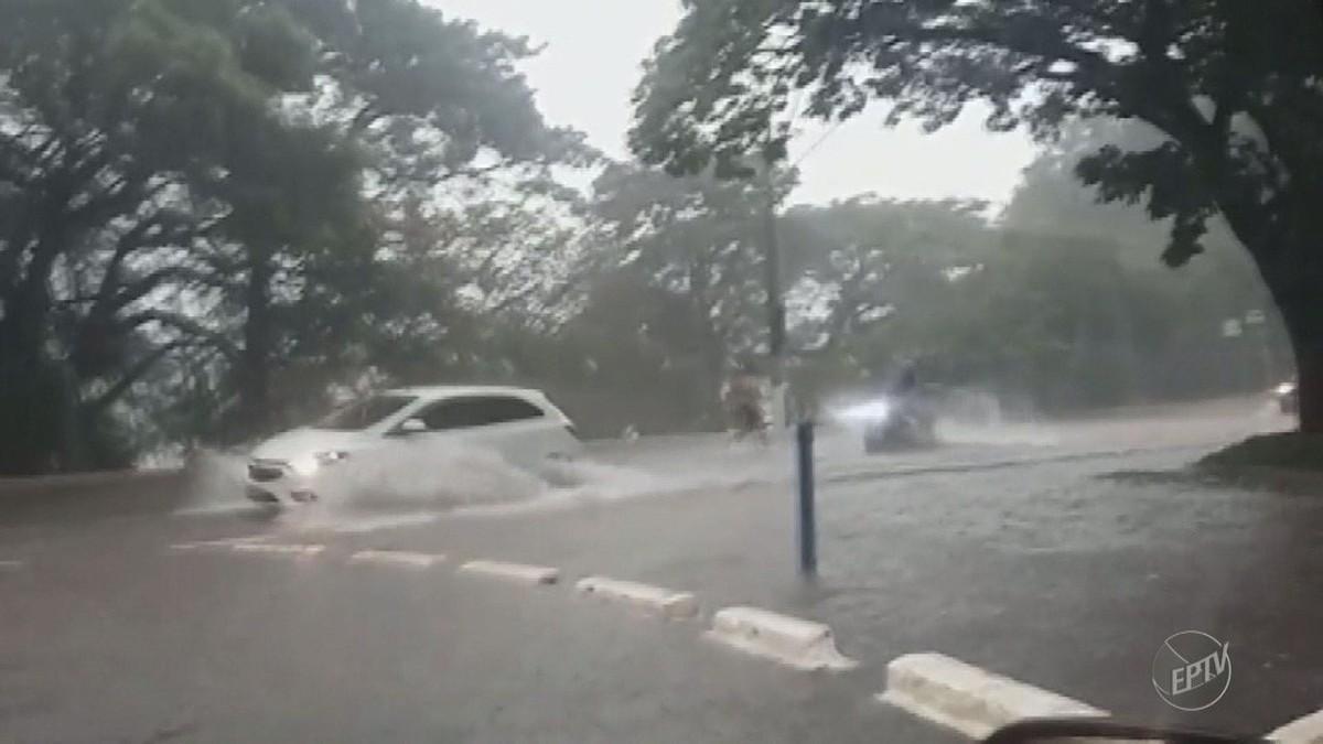 Chuva rápida registra pontos de alagamento em Campinas