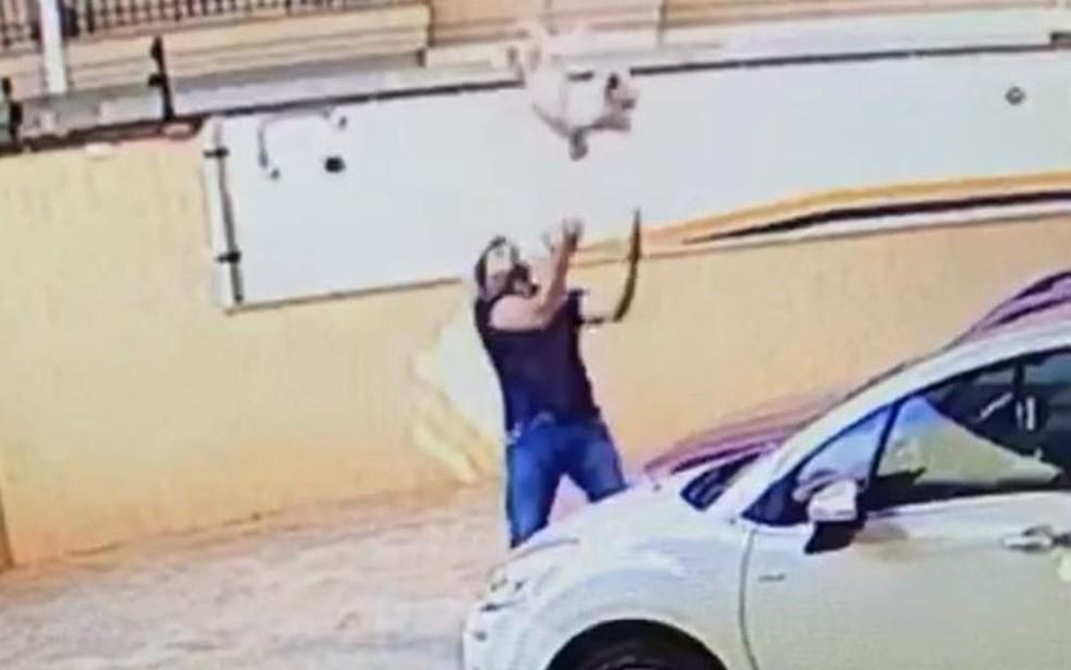 Morador salva cão que caiu de uma altura de 30 metros em Ribeirão Preto, SP (Foto: Reprodução/Câmeras de segurança)