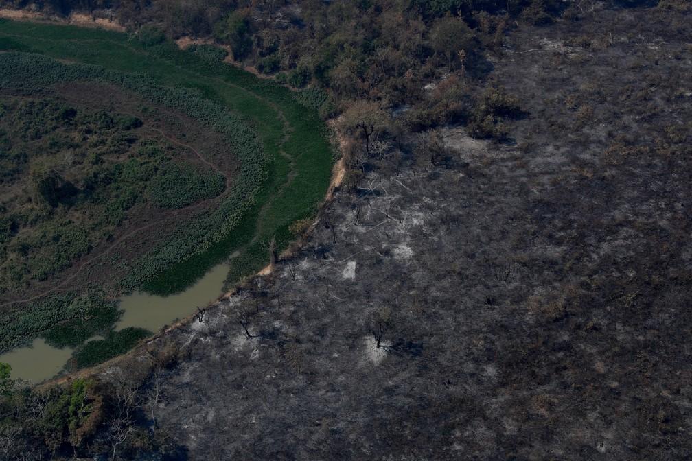 Foto aérea mostra árvores queimadas e vegetação destruída pelo fogo no Pantanal, a maior área úmida do mundo, em Poconé (MT) — Foto: Amanda Perobelli/Reuters