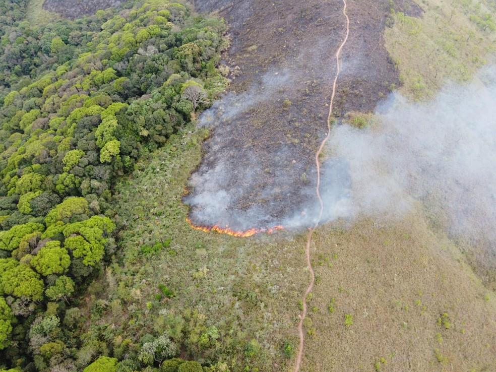 Área de mata é atingida por queimada em Várzea Paulista — Foto: Divulgação/Guarda Civil Municipal