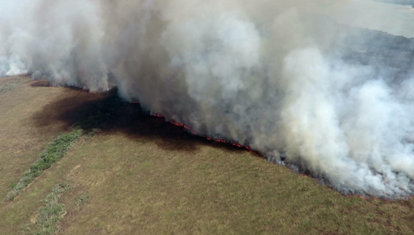 incendio ilha grande 2