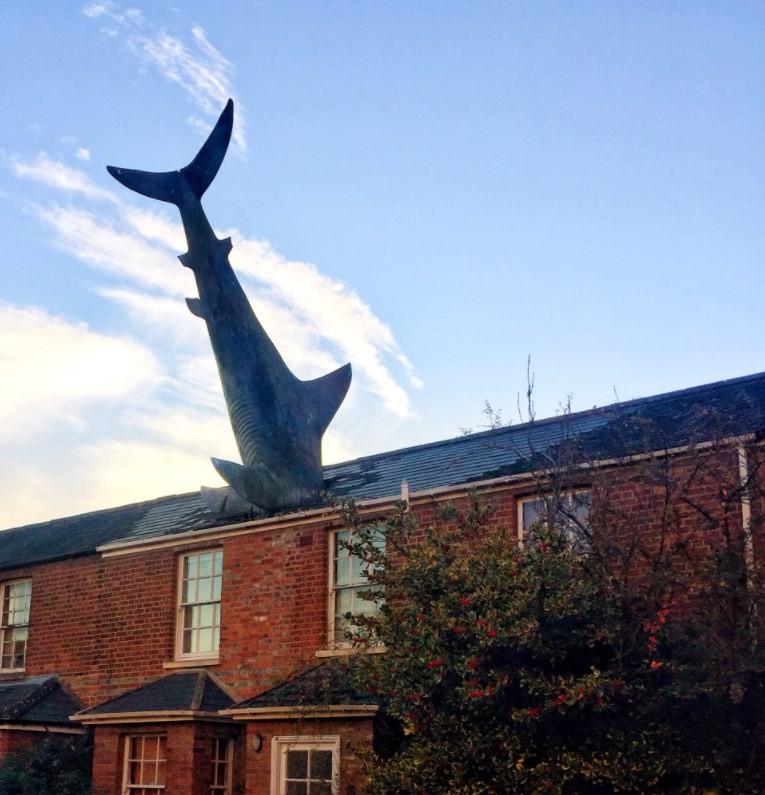 A escultura de tubarão branco em Oxford mede 7,6 metros