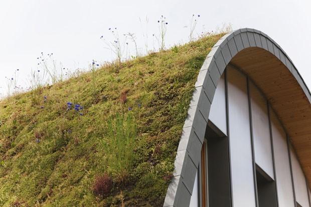 12 projetos incríveis com telhado verde (Foto: ©TERNISIEN)