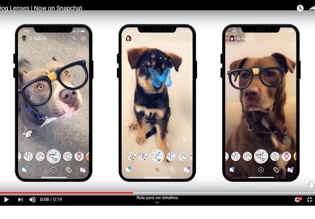 Reconhecimento facial de cachorros, nova ferramenta do Snapchat (Foto: Reprodução)