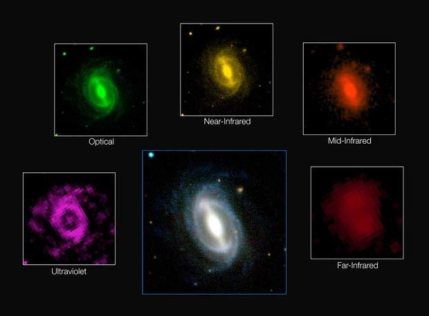 Composição de imagens mostra como uma galáxia típica aparece a diferentes comprimentos de onda no rastreio GAMA (Foto: ICRAR/GAMA and ESO)